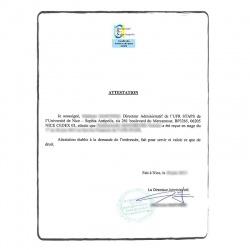 Internship certificate FR French