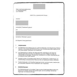 Employment contract DE
